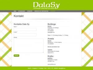 Dalasy-hemsida1